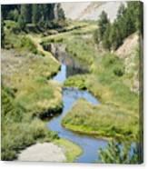 Latah Creek Canvas Print