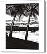 Late Afternoon At Dunk Island Canvas Print
