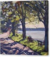 Late Afternoon At Niawanda Park Canvas Print
