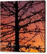 Late Autumn Sunset Canvas Print
