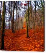Late Fall In The Woods Canvas Print