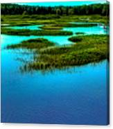 Late May On The Moose River Canvas Print