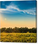 Late Summer Evening Canvas Print