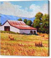 Late Summer Hay Canvas Print