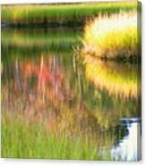 Stillness Of Late Summer Marsh  Canvas Print