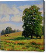 Late Summer Pastoral Canvas Print