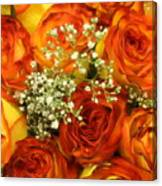 Late Summer Roses Canvas Print