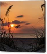 Late Sunrise Canvas Print