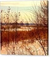 Late Winter at Emiquon Canvas Print