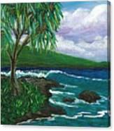 Lau Halas In Hilo Canvas Print