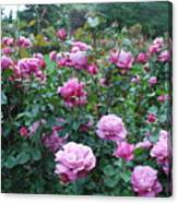 Laugerfeld Roses Canvas Print