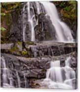 Laurel Falls Three Canvas Print