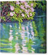 Laurel Reflection Canvas Print
