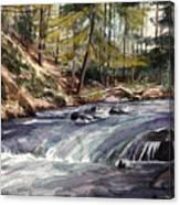 Laurel Run Canvas Print