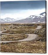 Lava Field In Iceland Canvas Print