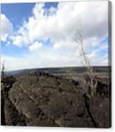 Lava Field Canvas Print