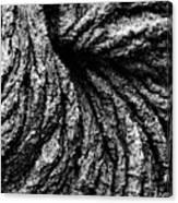 Lava Patterns - Bw Canvas Print