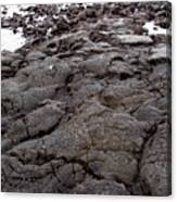 Lava Rock Island Canvas Print