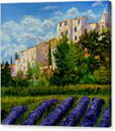 Lavander Field Canvas Print