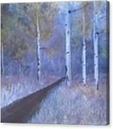 Lavendar Birch  Canvas Print
