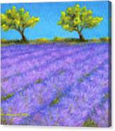 Lavender Field With Twin Oaks Canvas Print