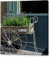 Lavender Flower Cart In Montmarte Paris Canvas Print
