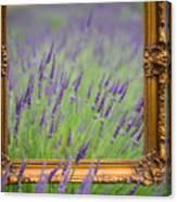 Lavender Frame Canvas Print
