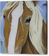 Lavender Horse Canvas Print