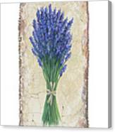 Lavender II Canvas Print