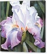 Lavender Light Canvas Print