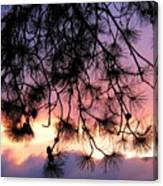 Lavender Sunset Canvas Print