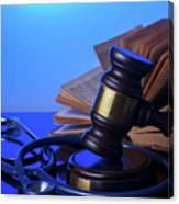 Medical Law Canvas Print