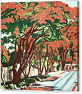 Lawson Avenue Flamboyants Canvas Print