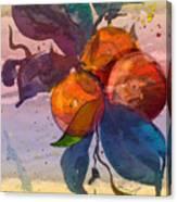 Le Temps Des Oranges Canvas Print