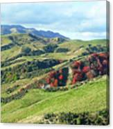 Leader Road View Canvas Print