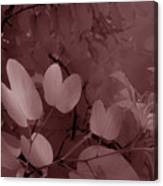 Leaf And Flower 2 Canvas Print