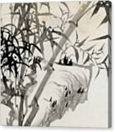 Leaf C Canvas Print
