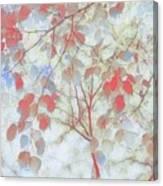 Leaf Me 4 Canvas Print