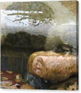 Leaf On Stone Canvas Print