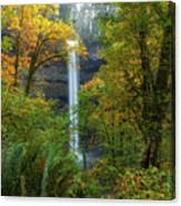 Leaf Peeping And Waterfall Canvas Print
