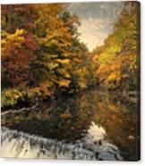 Leaf Peeping Canvas Print