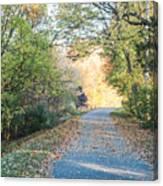 Leaf-strewn Path Canvas Print
