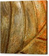 Leaf Structur Canvas Print