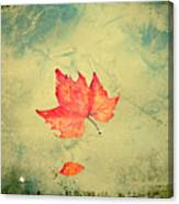 Leaf Upon The Water Canvas Print