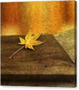 Leaf Zen M Canvas Print