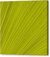 Leafy Leaf Canvas Print