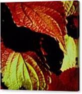 Leafy Melange Canvas Print