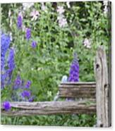 Leaning On The Fence Canvas Print