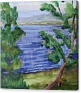 Leaning Tree By Lake Sacandaga Canvas Print