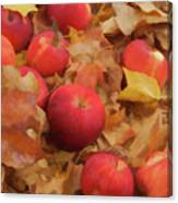 Leaves And Apples Canvas Print